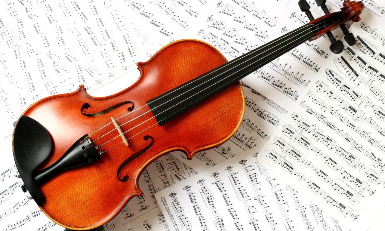 Apre a cremona il museo del violino un omaggio alla - Immagini violino a colori ...